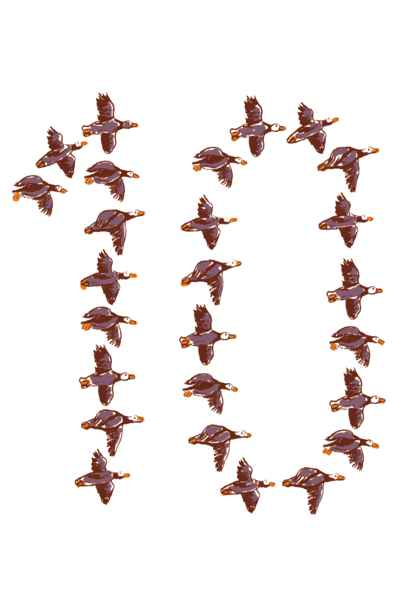 Migrant birds flying in the formation of number 10